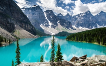 nature-trees-forest-canada-alberta-lakes-turquoise-2560x1600-wallpaper